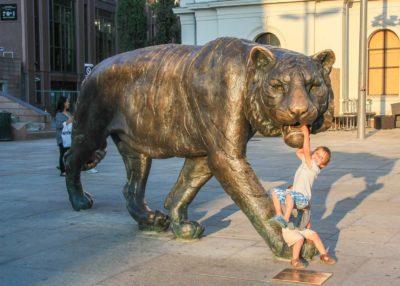 Тигр в Осло