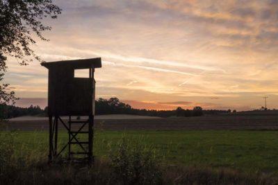 Закат в германских полях