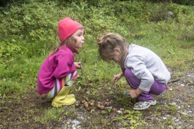 Дети и улитки