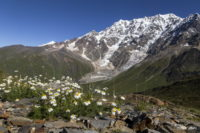 Вершины Шхары с юга
