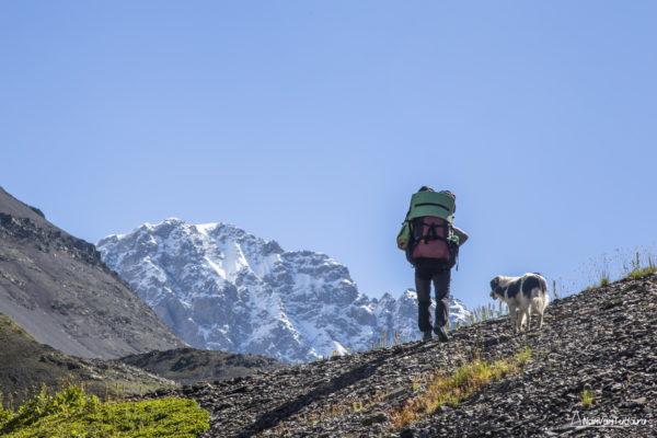 Подъем к перевалу Вахушти