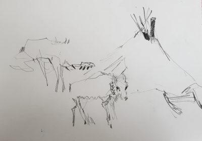 Лыжный поход по Полярному Уралу. Автор Света Романенкова