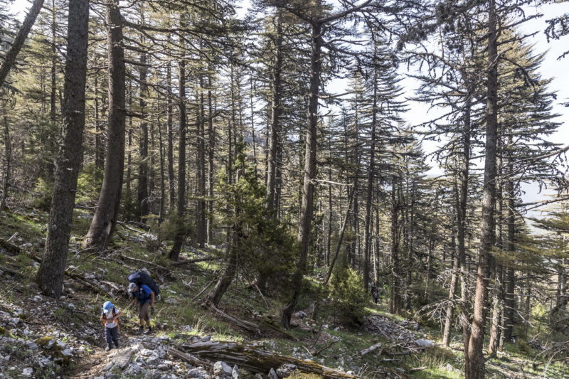 Подъем к перевалу Тахталы